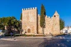 Средневековый замок Alter делает Chao, в Portalegre Стоковые Фотографии RF