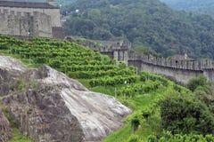 Средневековый комплекс замка Bellinzona, Тичино, Швейцарии Стоковое фото RF