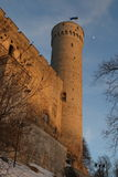 Средневековый прибалтийский замок и башня высокорослых или Pikk Hermann Стоковая Фотография