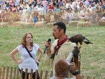 Средневековый соколиный охотник 29 фестиваля 2016 Стоковые Изображения