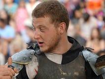2016 средневековый фестиваль 1 Стоковые Фотографии RF