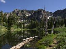Среднее озеро Bloomington Стоковые Изображения RF