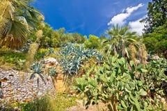 Среднеземноморской взгляд ландшафта зеленого цвета заводов Стоковые Изображения