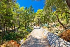 Среднеземноморской взгляд холма ландшафта зеленого цвета заводов Стоковые Фото