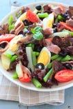 Среднеземноморской салат с камсами и оливками Стоковая Фотография