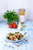 Среднеземноморской салат Farfalle с сухими томатами и ядрами сосны Стоковое Изображение RF