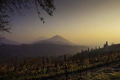 Средний заход солнца зимы с светлым туманом Стоковое Изображение RF