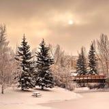 Средний зимний день Стоковое фото RF