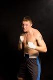 Средний молодой боксер с гадким выражением стоковые изображения