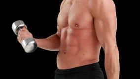 Средний раздел гантелей мышечного человека поднимаясь видеоматериал