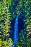 Средний север понижается, парк штата падений серебра, ИЛИ Стоковое фото RF
