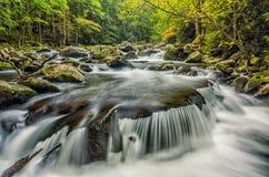 Средний Prong маленького реки, большие закоптелые горы Стоковые Фото