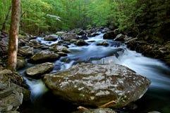 Средний Prong маленького реки, большие закоптелые горы стоковые изображения rf