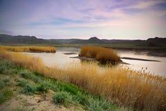 Средняя Азия реки природы ландшафта  стоковое фото