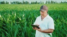 Средн-постаретый мужской фермер работая на поле мозоли Использует таблетку, рассматривает поле
