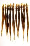 Срок высушенный воздухом на металлическом стержне Стоковые Изображения