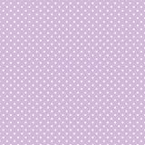 ставит точки белизна пастельной польки лаванды малая Стоковая Фотография RF