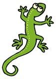 ставит точки зеленая ящерица Стоковые Фото