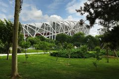 Стадион в Пекине, Китай гнезда птицы стоковое фото