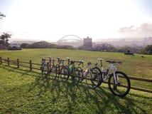 Стадион Дурбана bicycles mabhida Моисея Стоковые Изображения
