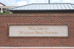 Стадион Williams Brice, Колумбия, Южная Каролина стоковое фото rf