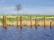 Стальные кучи в реке Стоковое Изображение