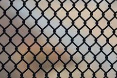 сталь загородки Стоковые Фото