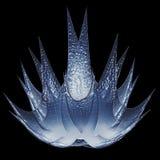 сталь льда цветка Стоковое Изображение