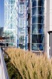 сталь стекла здания зодчества Стоковые Изображения