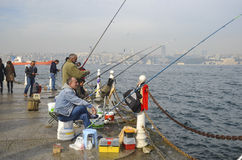 Стамбул на пеламиде Bosphorus, bluefish, скумбрия, сардины, Стоковые Фото