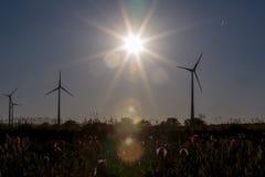 Станции энергии ветра в вечере Солнце Стоковые Изображения