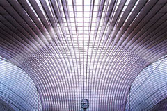 Станция Guillemins, Liege, Бельгия Стоковые Изображения RF