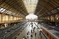 Станция Luz - São Paulo - Бразилия Стоковое Фото