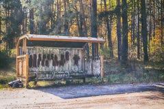Старая автобусная остановка около дороги в лесе Стоковое Изображение