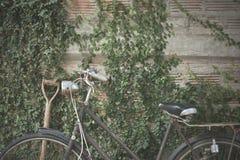 Старая автостоянка велосипеда Стоковое Изображение RF