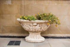 Старая античная ваза стиля на улице Стоковые Изображения