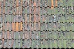 старая ая черепицей крыша Стоковые Изображения RF