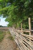 Старая бамбуковая загородка Стоковое фото RF
