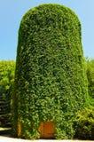 Старая башня воды Стоковая Фотография