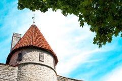 Старая башня стародедовский город Воинская крепость Стоковое Изображение