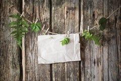 Старая бумага с заводами на деревянной предпосылке Стоковое Фото