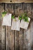 Старая бумага с заводами на деревянной предпосылке Стоковые Фотографии RF