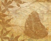 Старая бумажная текстура с декоративными элементами Стоковые Изображения