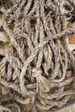 старая веревочка Стоковое Изображение