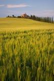 старая вилла взгляда Тосканы Стоковая Фотография
