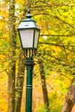 Старая винтажная лампа в парке на осени Стоковые Изображения
