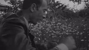 Старая винтажная середина фильма постарела человек собирая клубнику на поле маргаритки видеоматериал