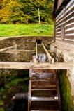 Старая водяная мельница Стоковые Фото