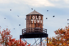 старая вода городка башни стоковые фото