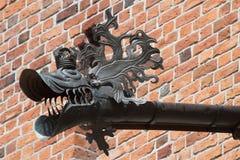 Старая водосточная труба в форме дракона Стоковые Фото
